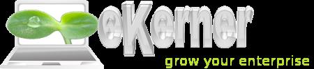 eKerner.com.au Website